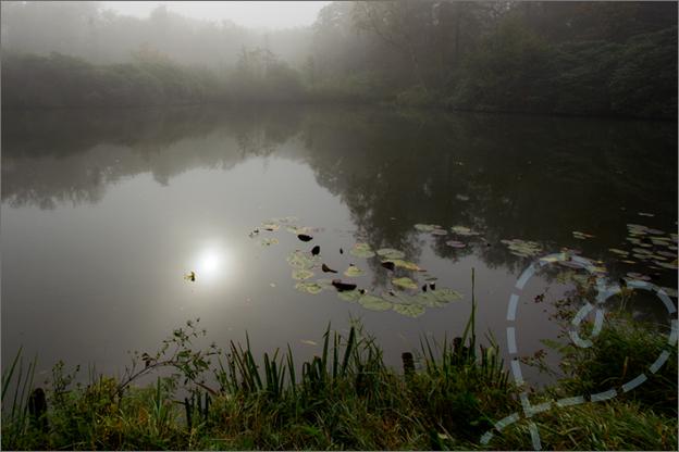 Foto van mist