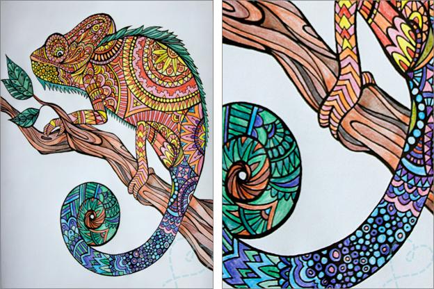 Kleurplaten Volwassenen Ingekleurd.Voorbeelden Creatief Kleurboek Voor Volwassenen Nobody Else