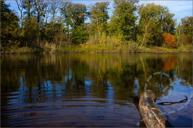 weerspiegeling herfst