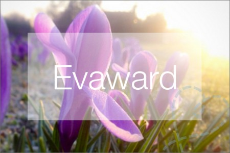 Tag #4: Evaward