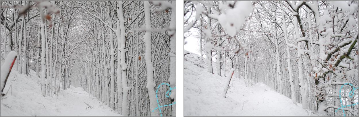 sneeuwfoto overbelichten