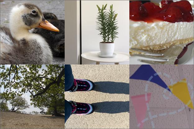 intro foto's van de maand