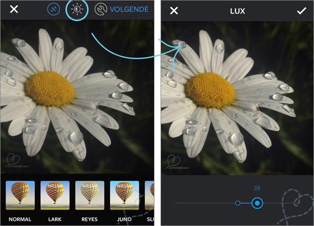 Instagram Lux