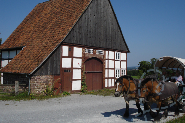 18_Openlucht_museum_boerderij_paarden