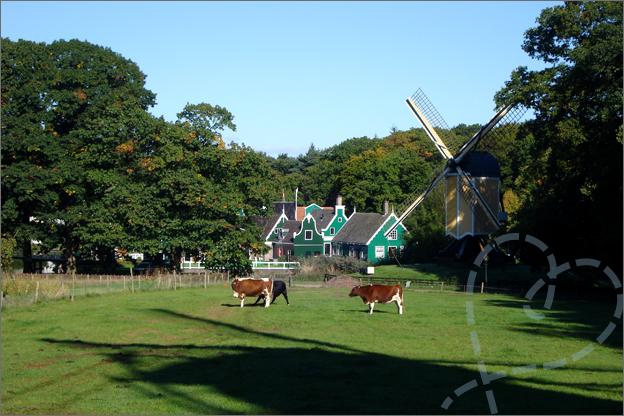 openluchtmuseum arnhem uitzicht molen