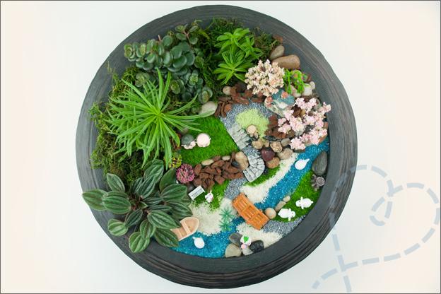 Mini tuin van boven