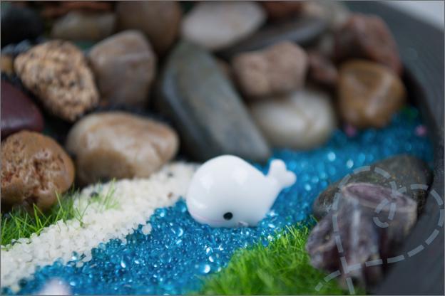 mini walvis voor in tuintje