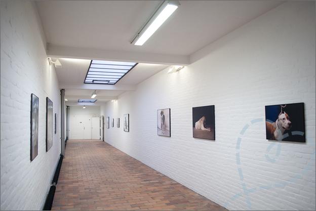 Museum_de_pont_alg_honden