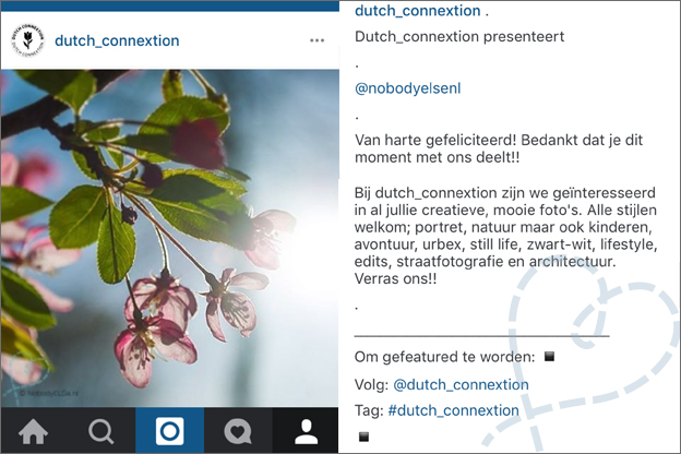 Instagram Dutch Connextion