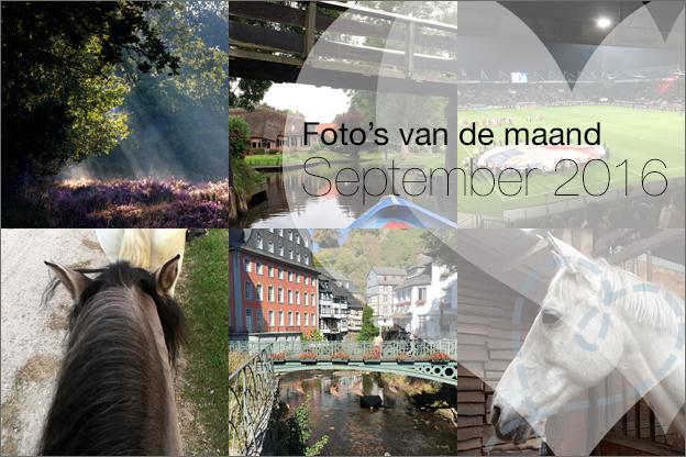 foto's van de maand september