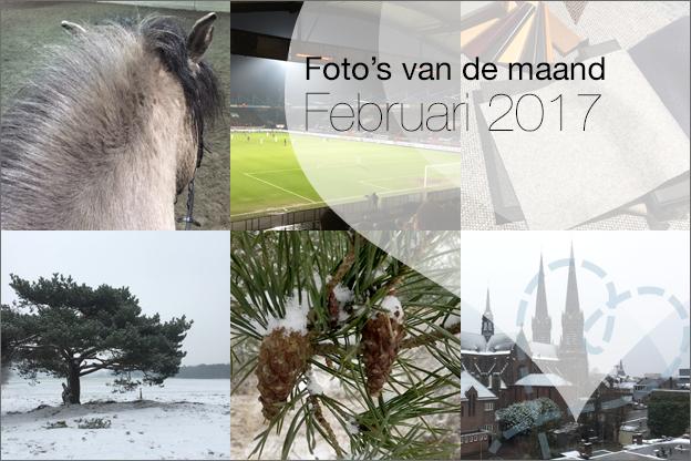 foto's van de maand februari