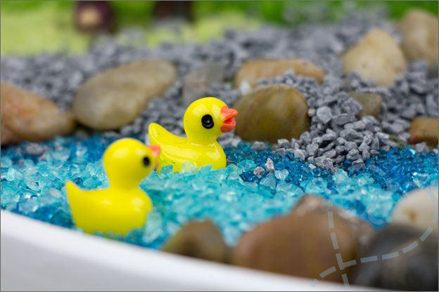 eendjes in water mini tuin