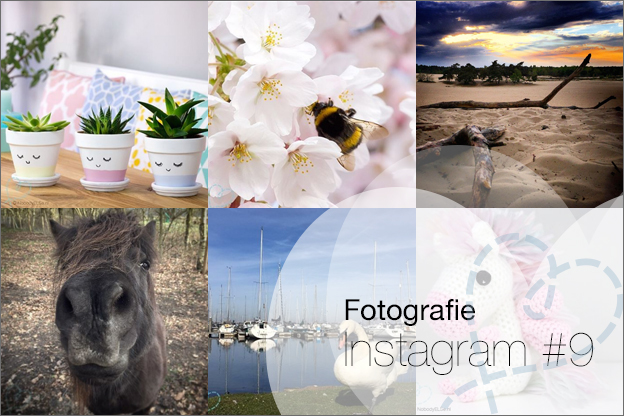 instragram foto's begin 2017