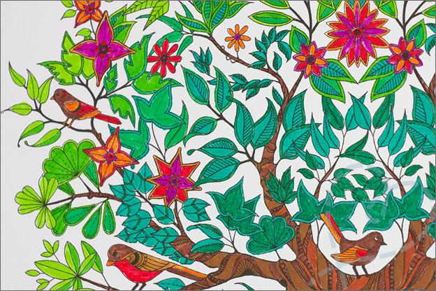 kleuren voor volwassen boom vogels kleurverloop detail
