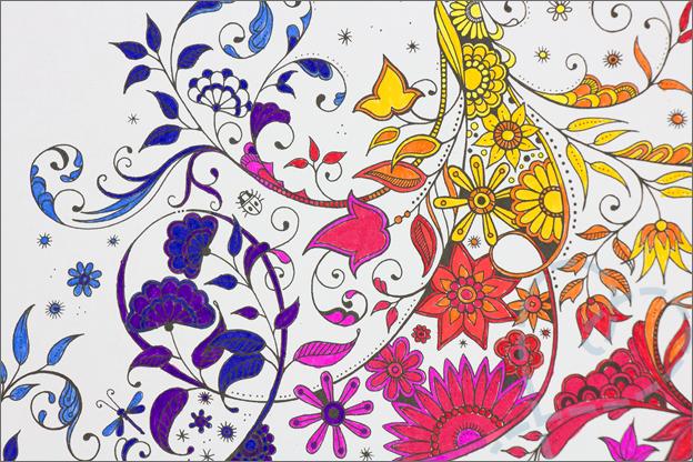 kleuren voor volwassen gieter kleuren regenboog detail