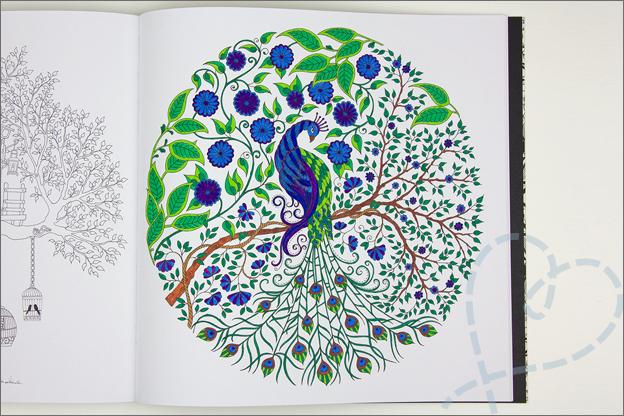 kleuren voor volwassen 4 boom pauw