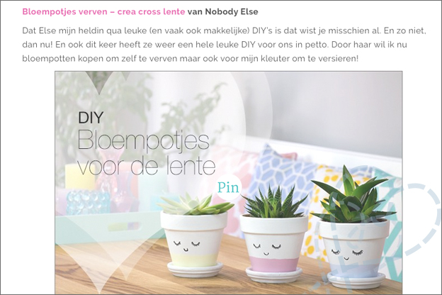 blogfeestje uitgelicht bloempotjes