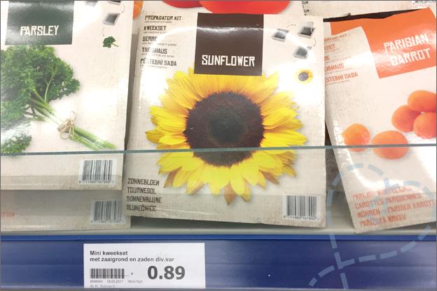 Zelfgekweekte zonnebloemen action verpakking