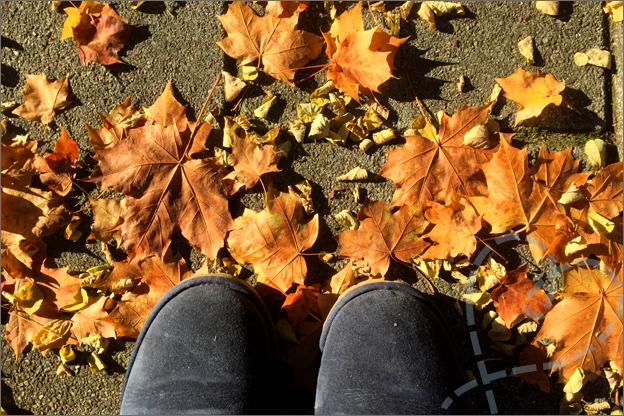 wandelen in de herfst