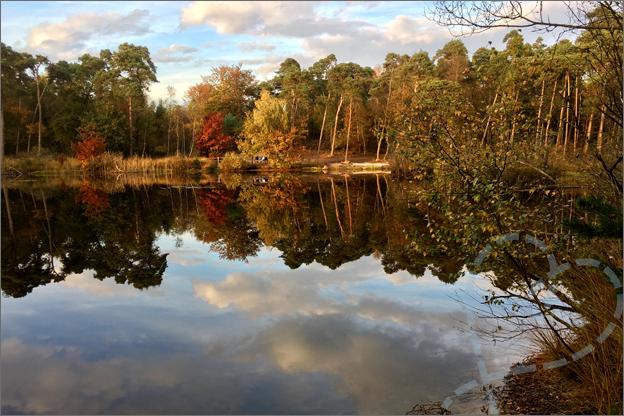 oisterwijkse vennen herfst weerspiegeling