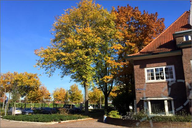 herfst in Tilburg