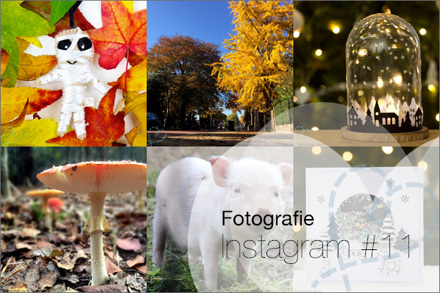 Intro 11 top beste fotos instagram