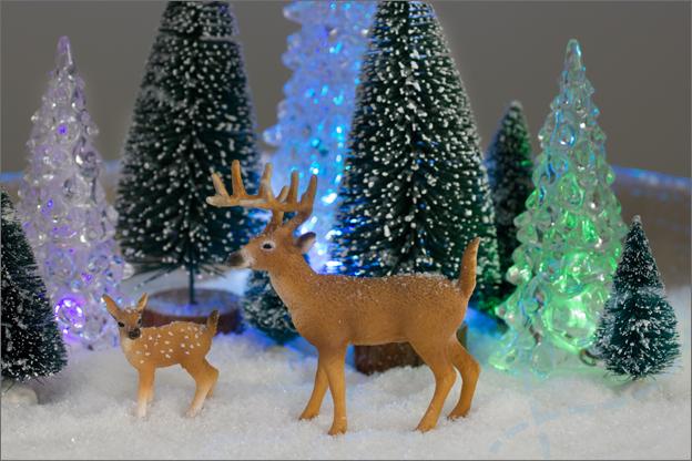 2015_intro_kerstdecoratie_schaal