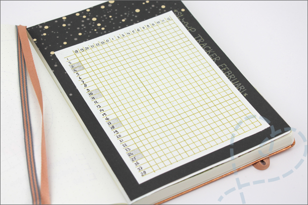 Mijn Bullet journal inspiratie sleep tracker Februari