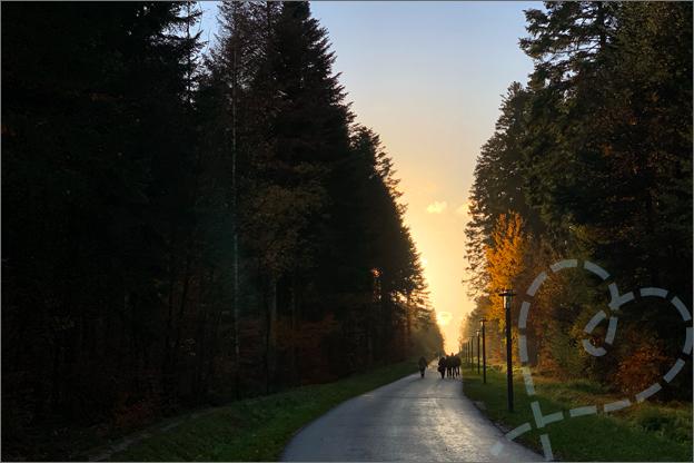 Center Parcs les trois forest park