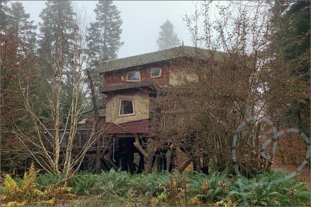 foto centerparcs les trois forest boomhut