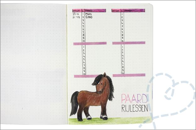 Bujo januari paardrijden bijhouden