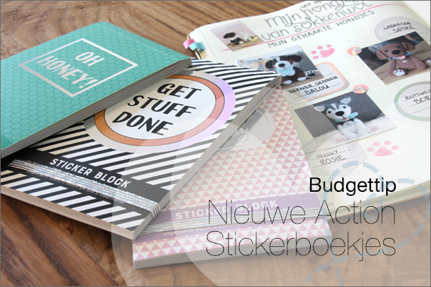 Tip Action stickerboekjes bullet journal