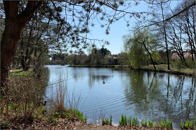 Vakantiepark het heijderbos meer water
