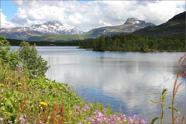 Vakantie verslag Noorwegen lofoten auto rondreis