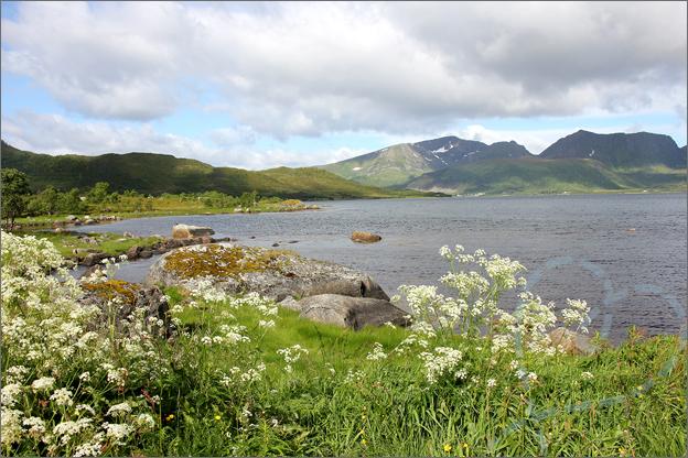 Vakantie verslag Noorwegen onderweg reis