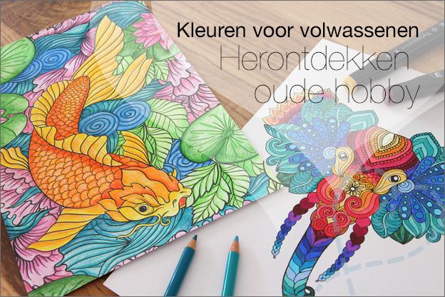 Kleuren voor volwassenen Action decotime voorbeelden inspiratie