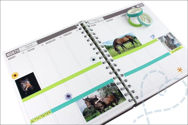 Agenda versieren met foto paard lucky
