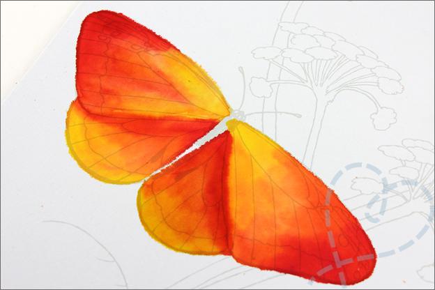 Review Action aquarelverf vlinder